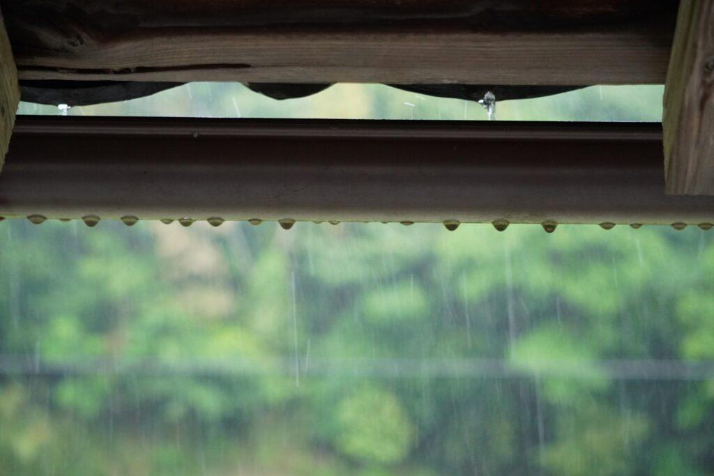 雨樋_つまり_除去方法
